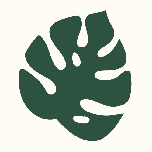 Logo PlanteNow.fr