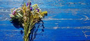 Composition fleurs séchées