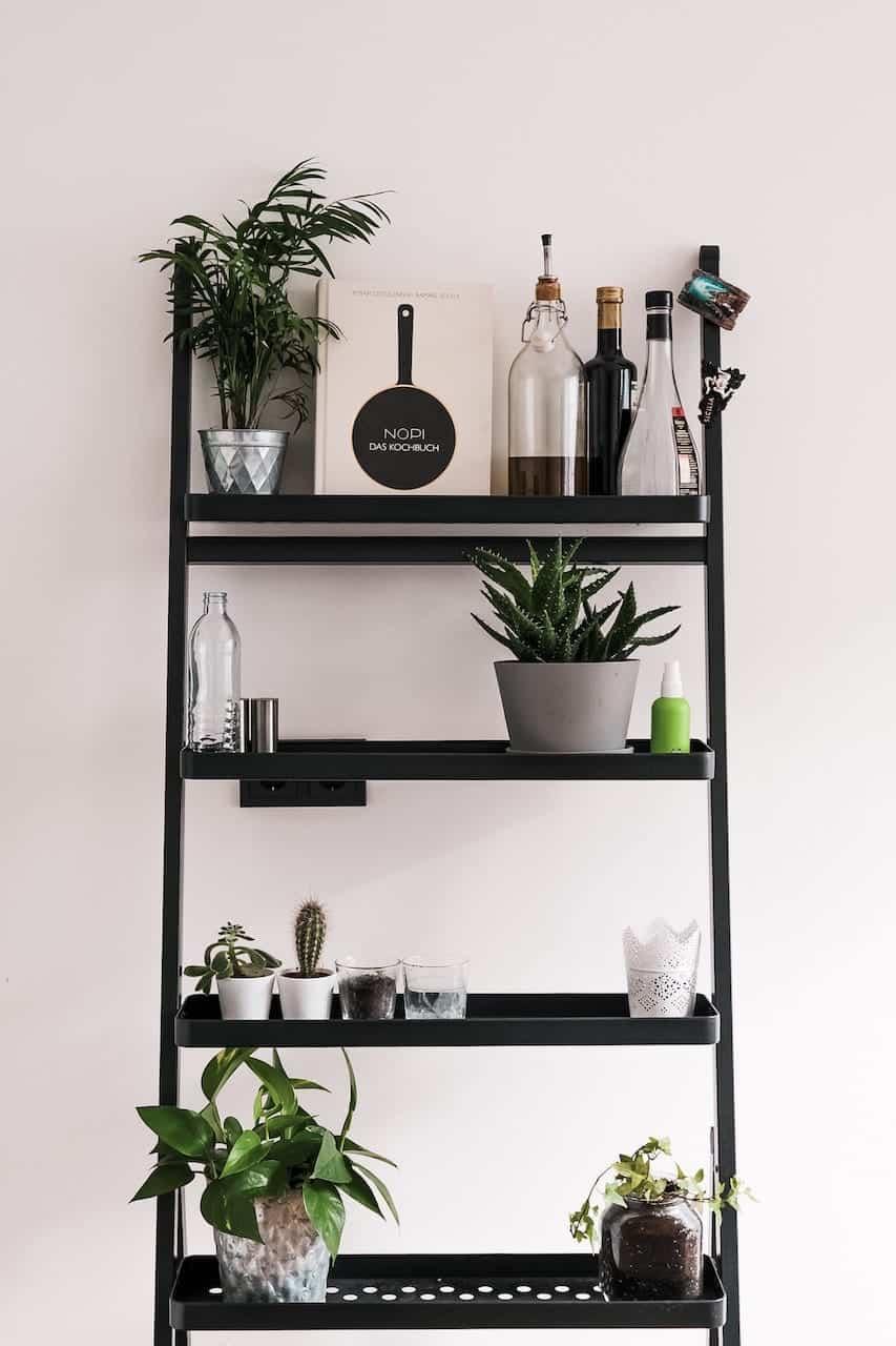 Etagère plantes d'intérieur