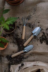 Outils pour plantes vertes