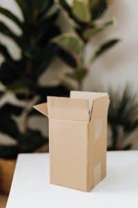 Box plantes