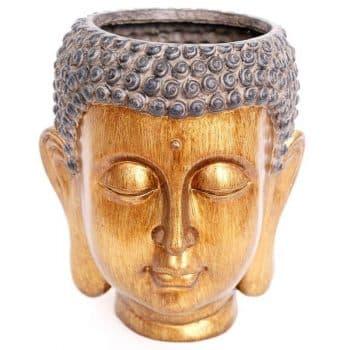 bouddha-cache-pot