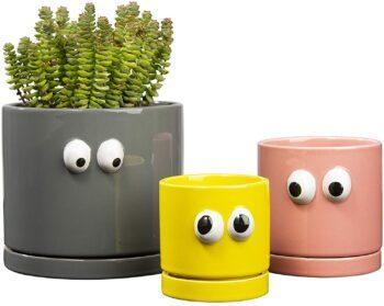 cache-pot-colorees