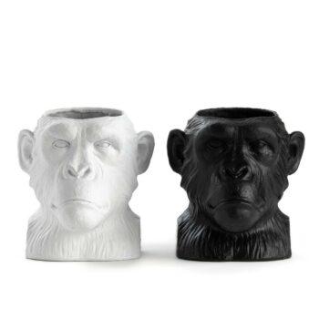 singe-cache-pot